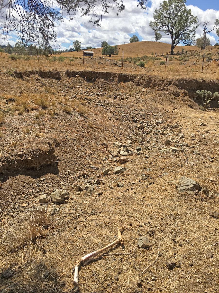 drought in Northwest NSW Australia